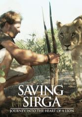 Saving Sirga: Journey into the Heart of a Lion